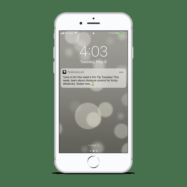 golf app notification marketing
